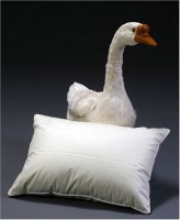 Travel Pillow With Goose Down